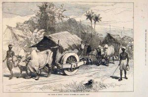 The Famine in Bengal